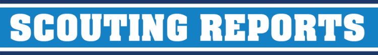 scoutingbanner